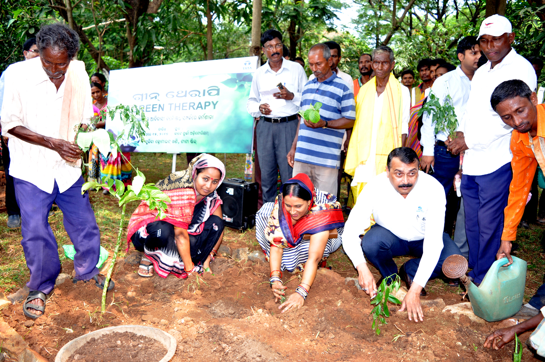 tribal medicinal plants of kambakam hills Tribal medicine, chakma, medicinal plants, rangamati, bangladesh introduction indigenous medicinal practices have always played a role in discovery of drugs from.