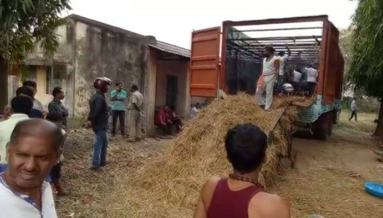 Four trucks smuggling over 200 cattle seized at Angul