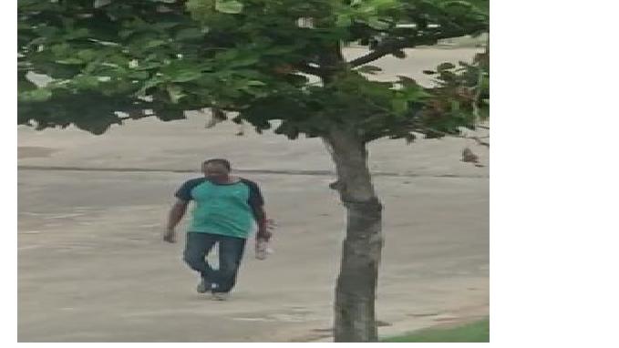 Police Identifies Elder Brother As Killer In Balianta Murder Case