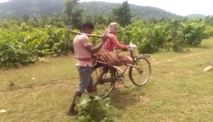 Shocking! Body Carried On A Cycle In Odisha
