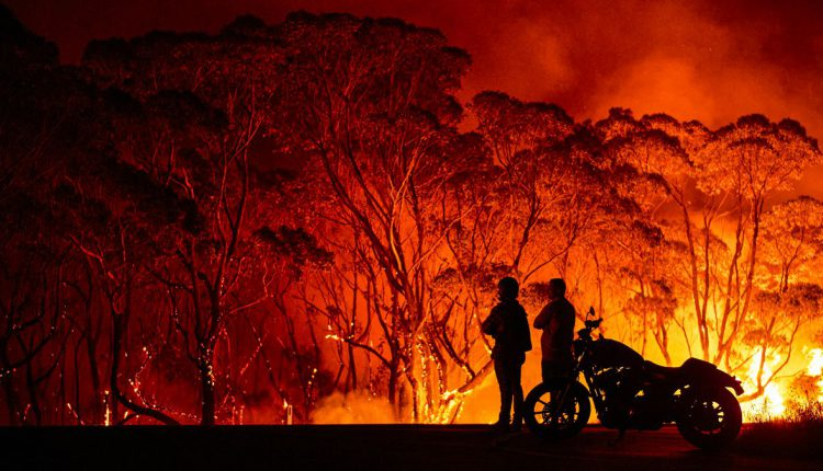 tourism affected by bushfires