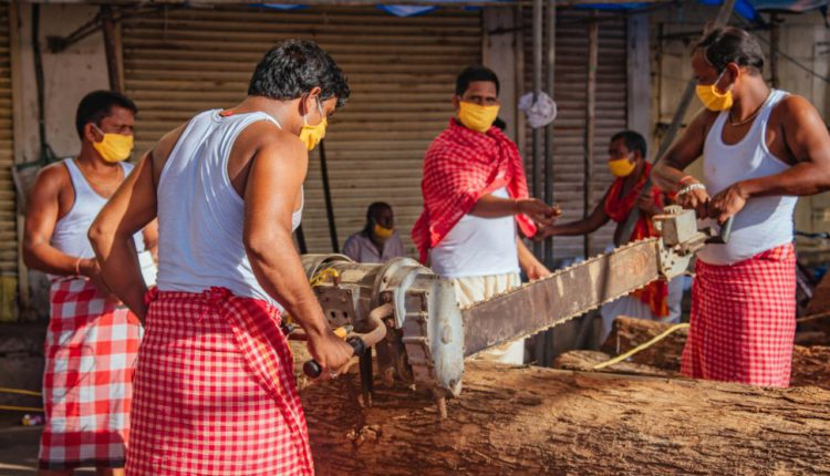 Construction of chariots for Puri Rath Yatra begins