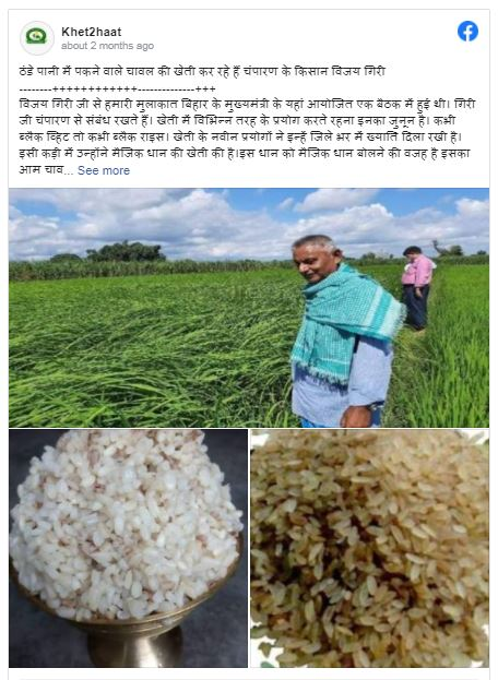 Unbelievable, But True! You Can Cook This Magic Rice In Cold Water; Know More About It
