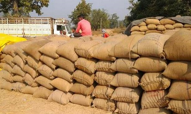odisha paddy procurement