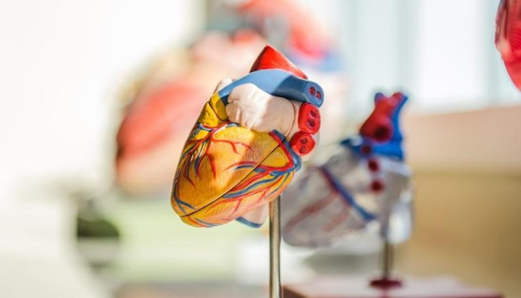 heart disease in young age